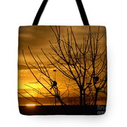 Sunrise Song Tote Bag