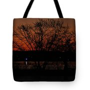 Sunrise Vi Tote Bag