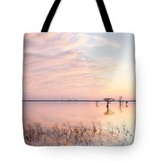 Sunset - Pretty In Pink Tote Bag