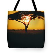 Sunset And Trees, Serengeti Plains Tote Bag