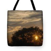 Sunset At The Oasis Tote Bag by Joan Carroll