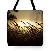 Sunset Behind Tall Grass Tote Bag