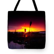 Sunset Cat Tail Tote Bag