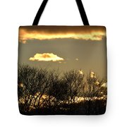 Sunset Gold Tote Bag