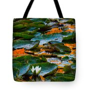 Sunset On A Lily Pond Tote Bag