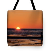 Sunset Park Petoskey Mi Tote Bag