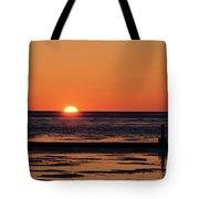 Sunset Park Petoskey Mi Tote Bag