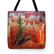 Sunset Point Trees Tote Bag