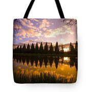 Sunset Reflection In A Park Pond Tote Bag by Craig Tuttle