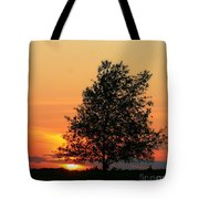 Square Photograph Of A Fiery Orange Sunset And Tree Silhouette Tote Bag