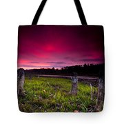 Sunset Stumps Tote Bag