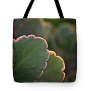 Sunset Succulents Tote Bag