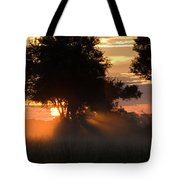 Sunset With Silhouetted Trees Tote Bag