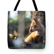 Sunsetting On Youth Tote Bag