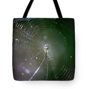 Sunshine On Swamp Spider Tote Bag