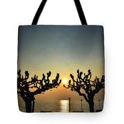 Sunshine Over A Lake Tote Bag