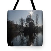 Sunshine Star Tote Bag