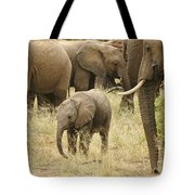 Surrounded By Family Tote Bag
