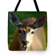Survival Of Innocence Tote Bag
