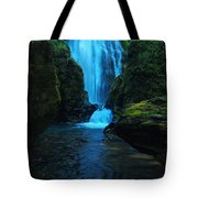 Susan Creek Falls Tote Bag
