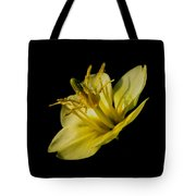 Suspended Tote Bag