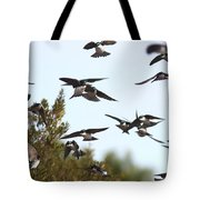Swallows - All In The Family Tote Bag
