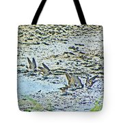 Swallows At The River Tote Bag