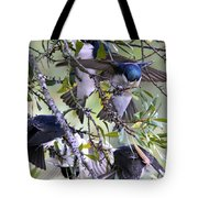 Swallows In Pooler Tote Bag