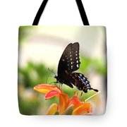 Swallowtail - Lite And Lively Tote Bag