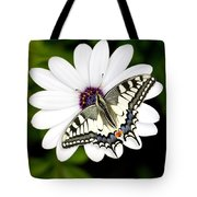 Swallowtail Butterfly Resting Tote Bag