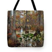 Swamp In Fall Tote Bag