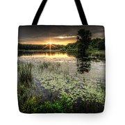 Swamp Sunrise Tote Bag