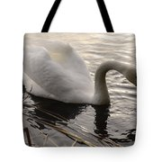 Swan Along The Shore Tote Bag