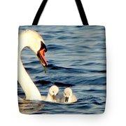 Swan And Signets On Wall Lake  Tote Bag
