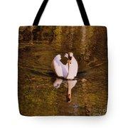 Swan At Susan Lake Tote Bag