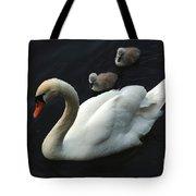 Swan Family 1 Tote Bag