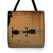 Swan Family At Sunset Tote Bag by Camilla Brattemark