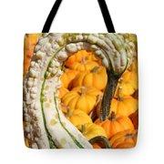 Swan Gourd Tote Bag