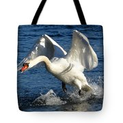 Swan In Action Tote Bag