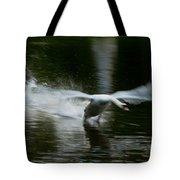 Swan In Motion Tote Bag