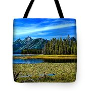 Swan Lake II Tote Bag