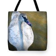 Swan On Evergreen Lake Tote Bag