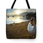 Swan On The Beach Tote Bag