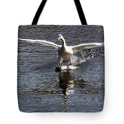 Swan Touches Down Tote Bag