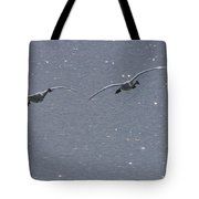 Swans Coming In For A Landing, Tagish Tote Bag