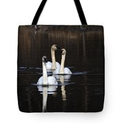 Swans In A Row Tote Bag