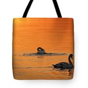 Swans In Early Light  Tote Bag