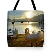 Swans In Sunset Tote Bag