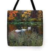 Swans In The Lake Tote Bag