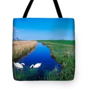 Swans On Bog, Near Newcastle, Co Tote Bag